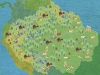 a amazonia e os objetivos de desenvolvimento do milenio - A Amazônia e os Objetivos de Desenvolvimento do Milênio