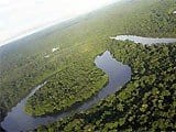 artigocie101 - Lessons from aging the Amazon frontier: opportunities for genuine development.
