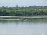 congresso14 - Análise legislativa sobre beneficiários de pagamento por serviços ambientais e Redd+ em áreas protegidas na Amazônia