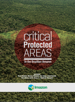 critical proteced areas - Critical Proteced Areas in the Brazilian Amazon