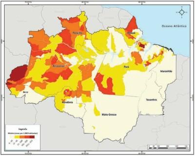 figura32 - A Amazônia e os Objetivos do Milênio 2010