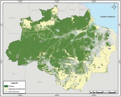 figura40 - A Amazônia e os Objetivos do Milênio 2010