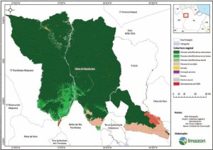 image 18 300x212 - Plano de Manejo da Floresta Estadual de Trombetas
