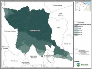image 25 300x225 - Plano de Manejo da Floresta Estadual de Trombetas