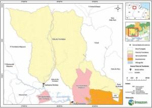 image 6 300x213 - Plano de Manejo da Floresta Estadual de Trombetas