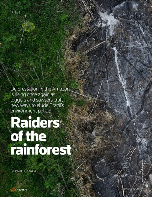 image home1 - Raiders of the rainforest