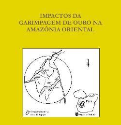 impactos da garimpagem g - Impactos da Garimpagem de Ouro na Amazônia (n° 2)