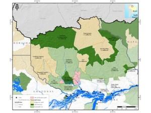 potencial economico4 300x225 - Potencial Econômico nas Florestas Estaduais da Calha Norte