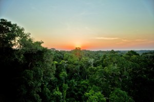 Amazon Sunset 300x199 - Mapping Change in the Amazon: How Satellite Images are Halting Deforestation