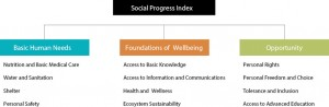 ResExecIPS ING fig01 300x98 - Social Progress Index for the Brazilian Amazon - IPS Amazônia 2014 (Executive Summary)