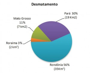 image 31 300x245 - Boletim do Desmatamento (SAD) Fevereiro de 2011