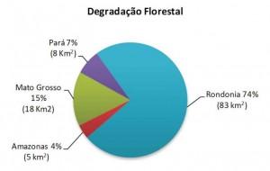 image 5 300x190 - Boletim do Desmatamento (SAD) Fevereiro de 2011