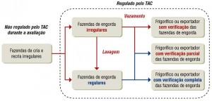 fig05 TACPecuaria 300x144 - Como melhorar a eficácia dos acordos contra o desmatamento associado à pecuária na Amazônia?