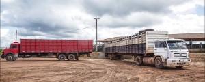 foto 05 300x120 - Como melhorar a eficácia dos acordos contra o desmatamento associado à pecuária na Amazônia?
