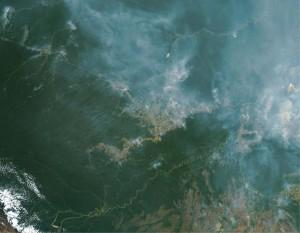 img04 pecClima 300x233 - Como reduzir a contribuição da pecuária brasileira para as mudanças climáticas?