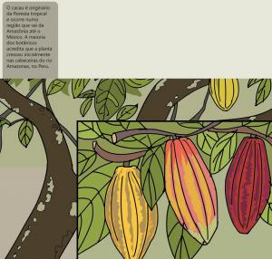 cacau 300x286 - A floresta habitada: História da ocupação humana na Amazônia