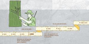 ciclo da borracha 300x151 - A floresta habitada: História da ocupação humana na Amazônia