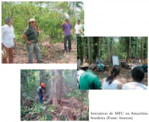iniciativas MFC amazonia 300x246 - Manejo Florestal Comunitário: processos e aprendizagens na Amazônia brasileira e na América Latina