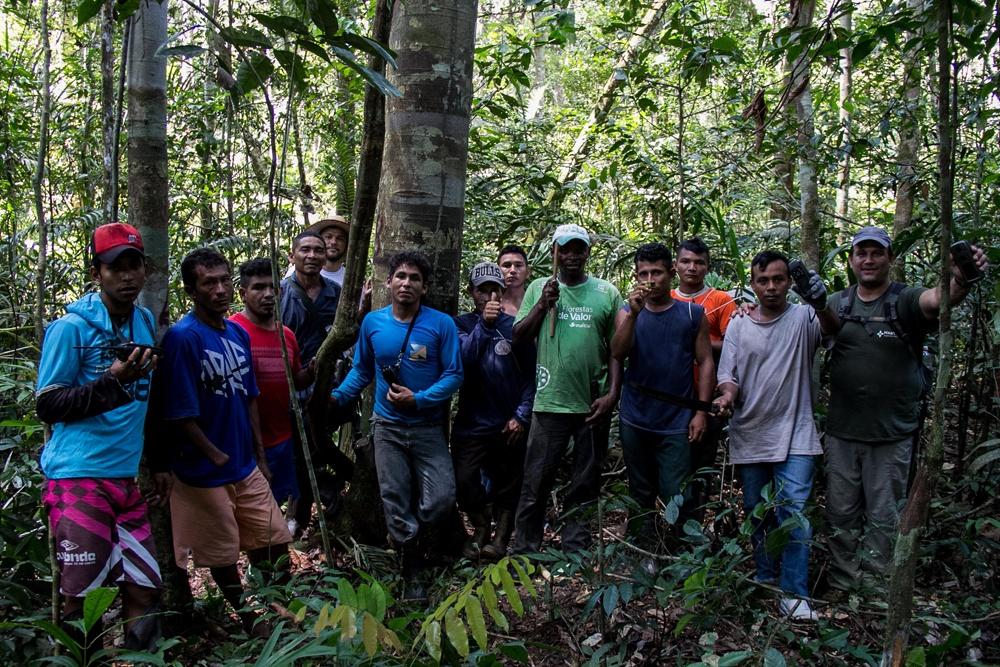 AlexFisberg PTS 17 7801 - Fortalecimento da Gestão Ambiental na Amazônia