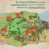 a_impunidade_de_crimes_ambientais_em_areas