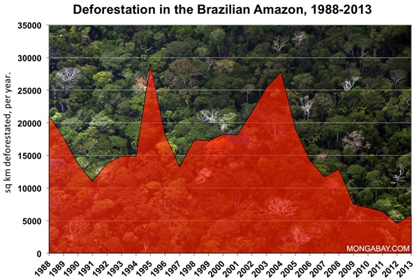 braz defor 88 05 600 - Illegal logging remains rampant in Brazil