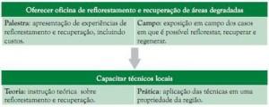 comoestimularorefloresmento