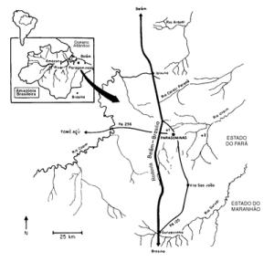 figura1 (1)