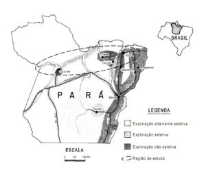 figura1 (2)