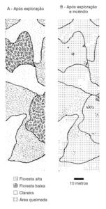 figura2 (1)