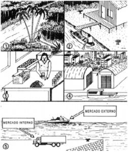 figura2 (2)