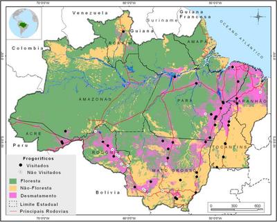 figura2 3 - A Pecuária e o desmatamento na Amazônia na Era das Mudanças Climáticas.