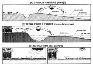 figura2 (3)