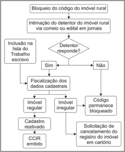 figura2 (5)
