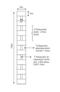figura33 (2)