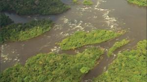 image 20 300x169 - Plano de Manejo da Floresta Estadual de Trombetas