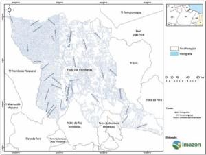 image 42 300x226 - Plano de Manejo da Floresta Estadual de Trombetas