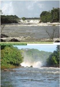 image 43 208x300 - Plano de Manejo da Floresta Estadual de Trombetas