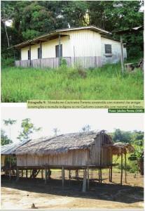 image 94 207x300 - Plano de Manejo da Floresta Estadual de Trombetas