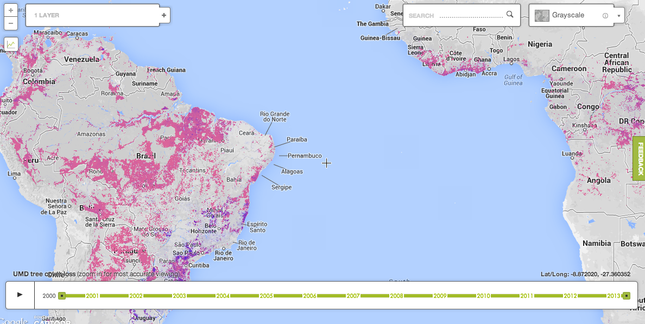 image home - Global Forest Watch: Dynamic New Platform to Protect Forests Worldwide