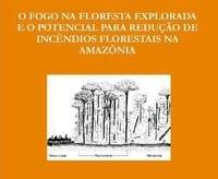 o_fogo_na_floresta_p
