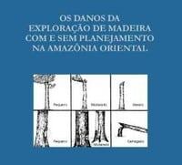 os_danos_da_exploracao_p