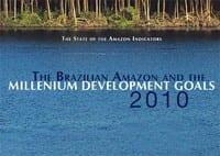 the_brazilian_amazon_and_the_milleniun_development
