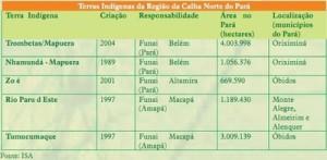 unidadedeconservacao 7 300x147 - Unidades de Conservação Estaduais do Pará na Região da Calha Norte do Rio Amazonas