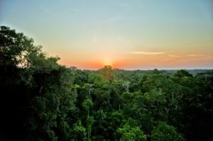Amazon_Sunset