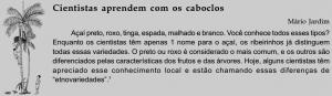 acai_uso