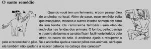 andiroba_remedio