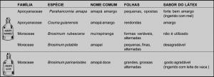 ipe_tabela2