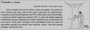 jatoba_quadro3