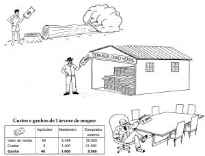 mogno_custos