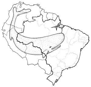 mogno_mapa